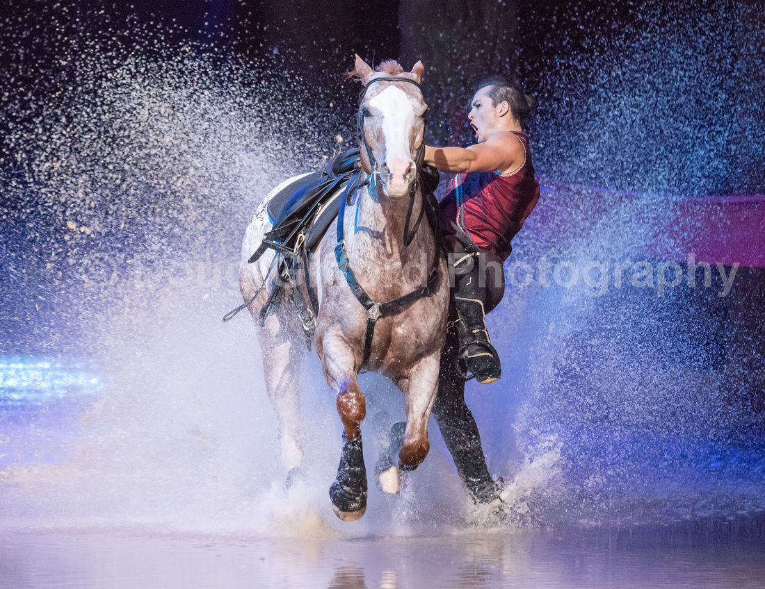 Cavalia Odysseo Celebrity Red Carpet Premiere